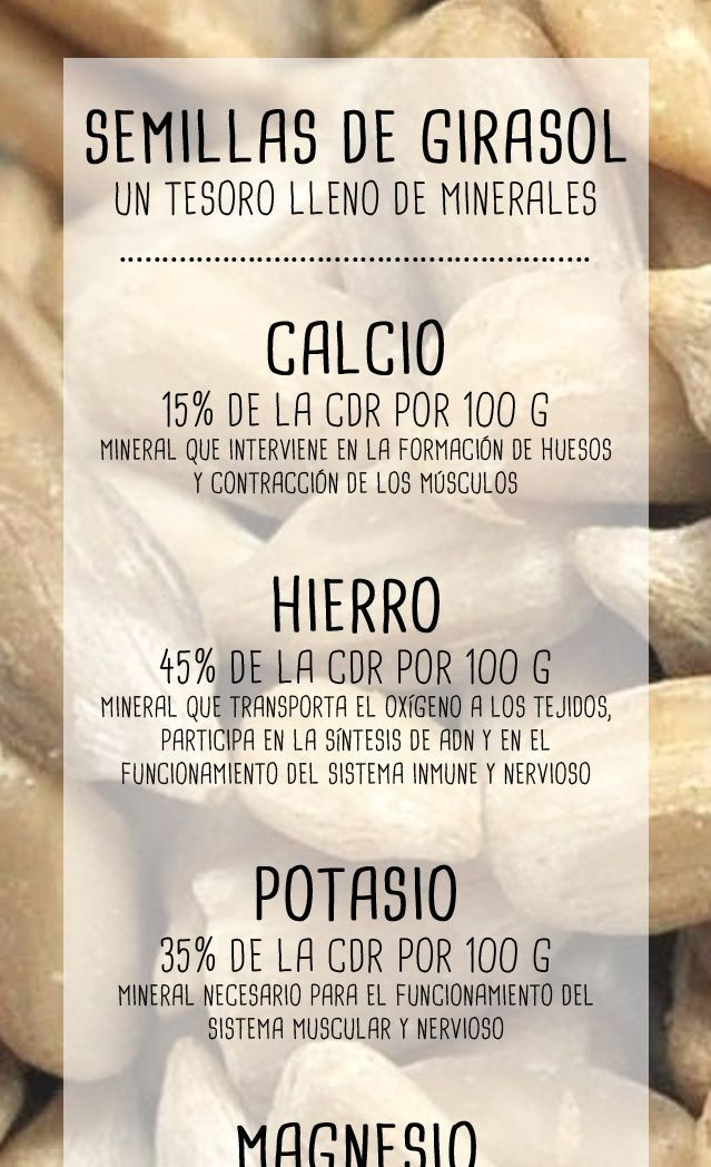 propiedades de la semilla girasol