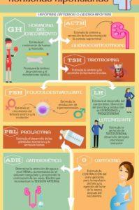 la hipófisis y las hormonas hipofisiarias