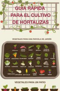 guía para cultivar huerto en casa