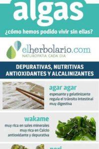 tipos de algas para adelgazar