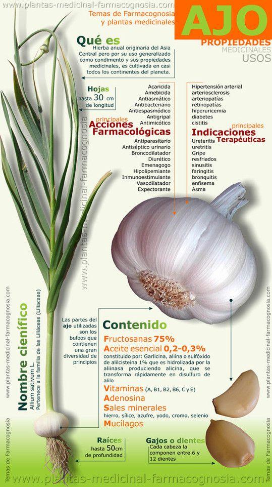 infografía sobre el ajo