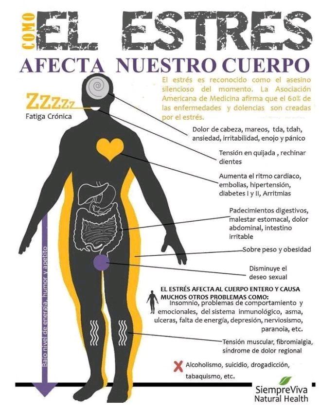 infografía sobre el estres