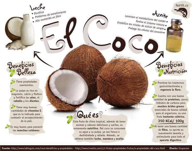 infografía coco