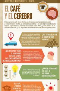 efectos del café sobre el cerebro