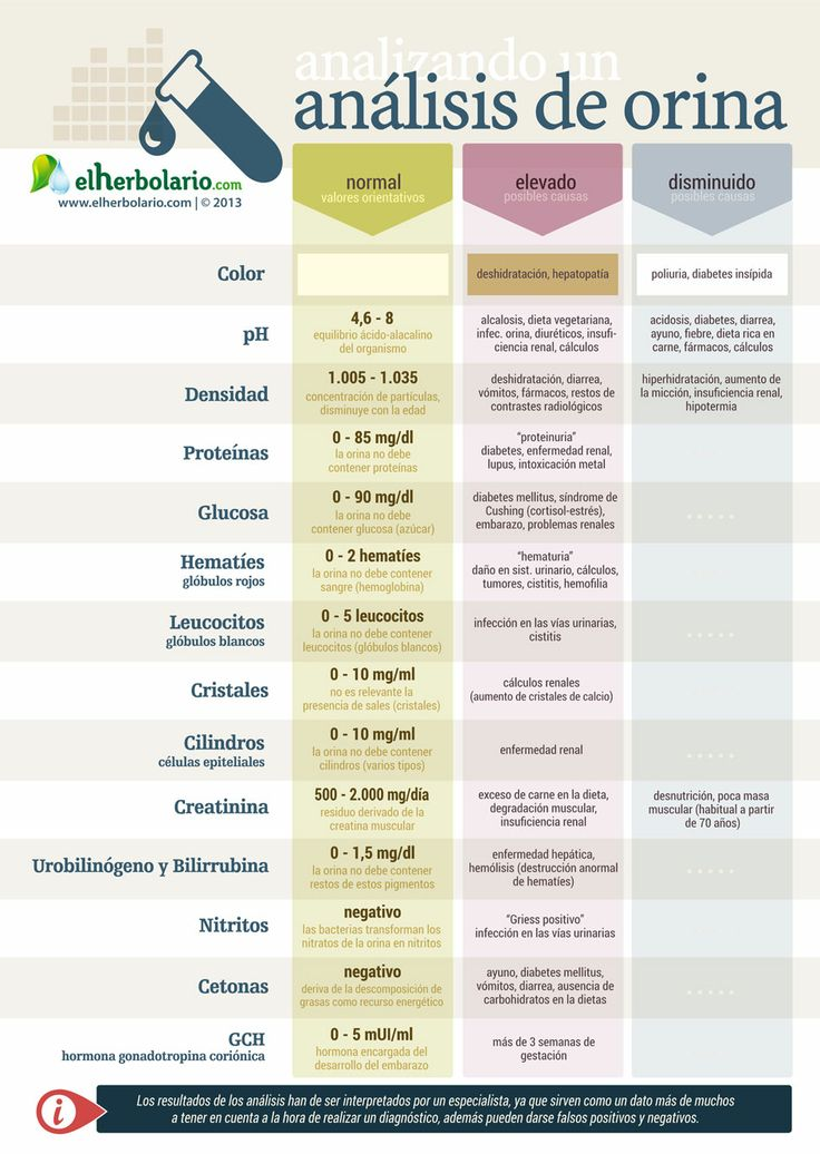 infografia análisis de orina