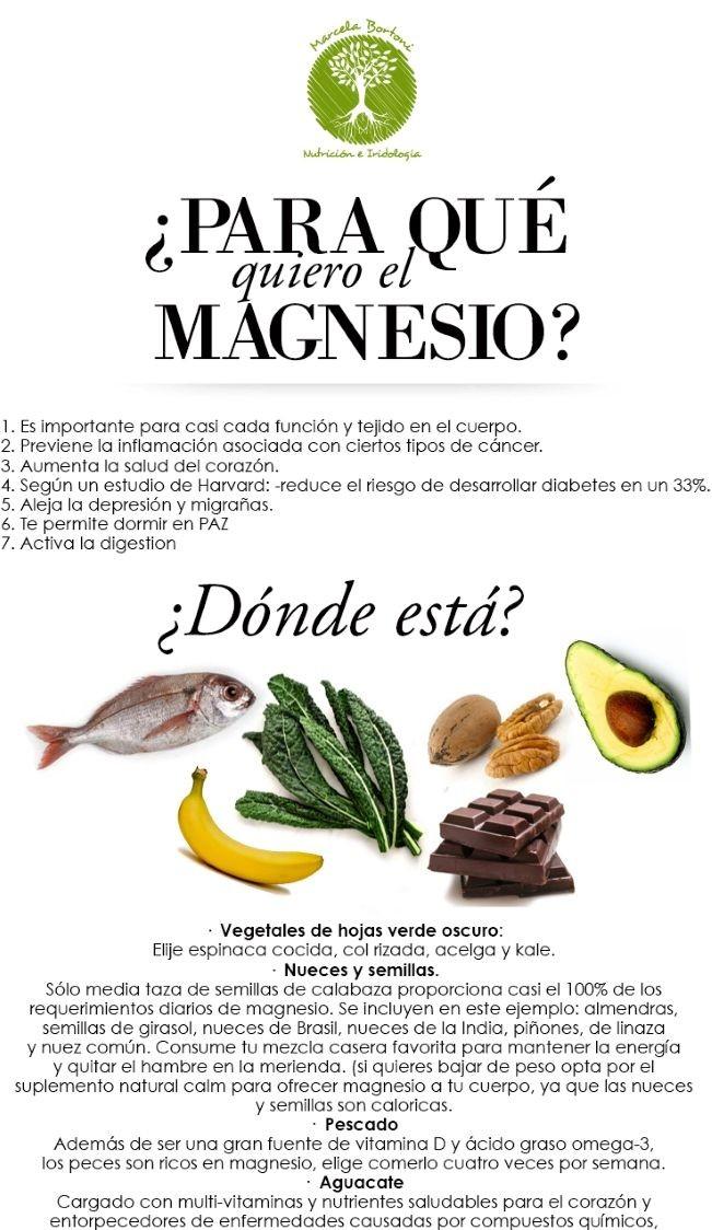 infografia magnesio