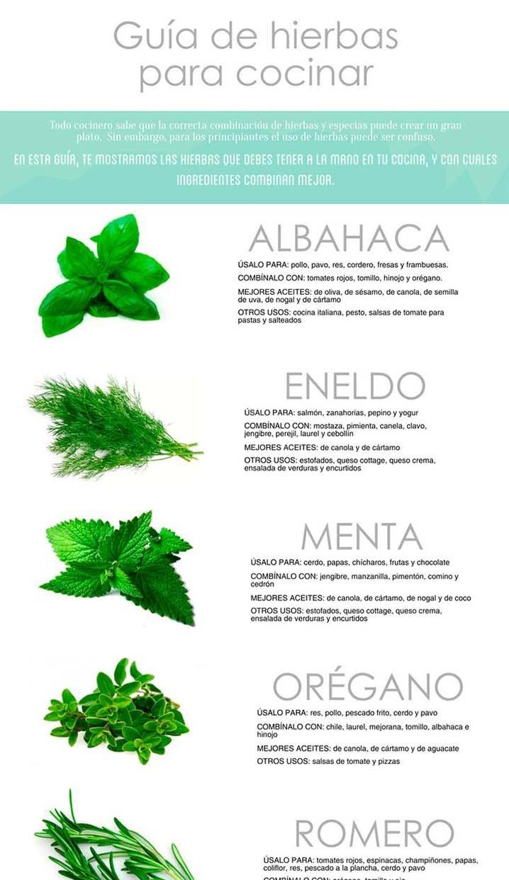 Hierbas para tener a mano en la cocina infograf as y for Plantas aromaticas para cocinar