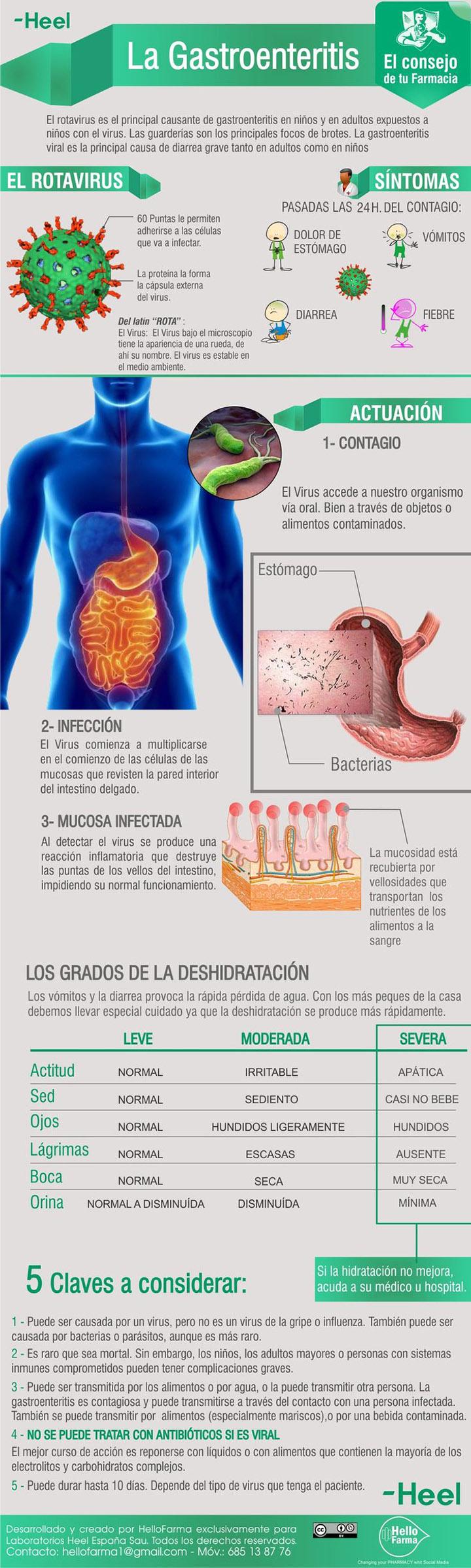 infografía gastroenteritis