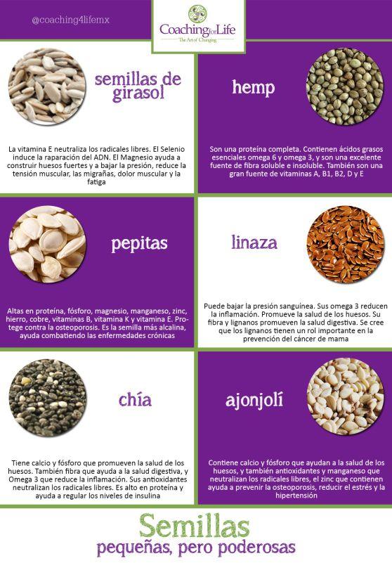 infografía semillas