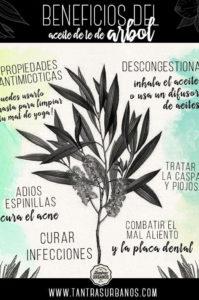 beneficios del aceite de té de arbol