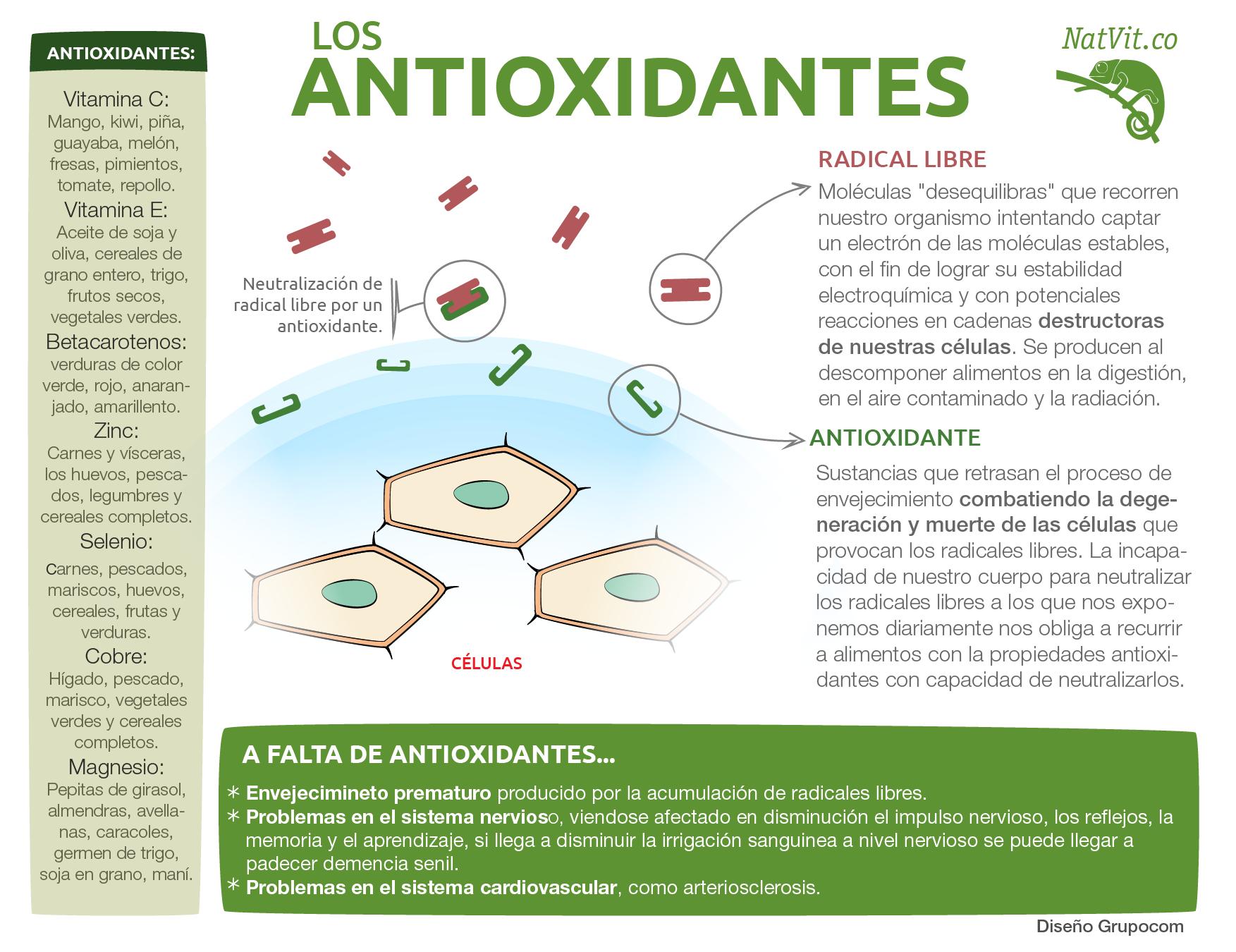 Los antioxidantes y sus beneficios para la salud infograf as y remedios - Que alimentos son antioxidantes naturales ...