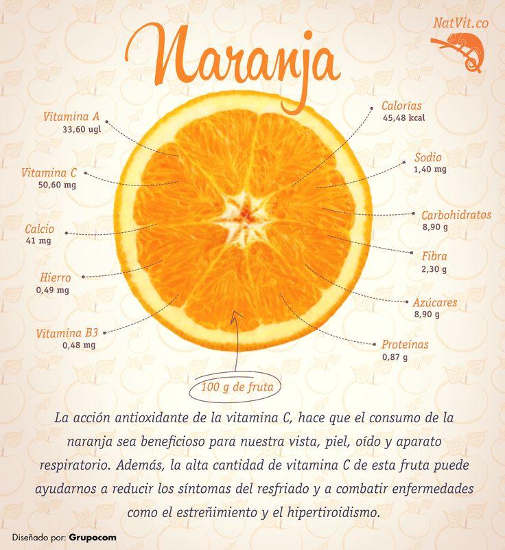 Fantástico Anatomía De Una Naranja Inspiración - Imágenes de ...