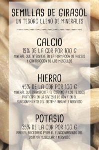semillas de girasol la infografía