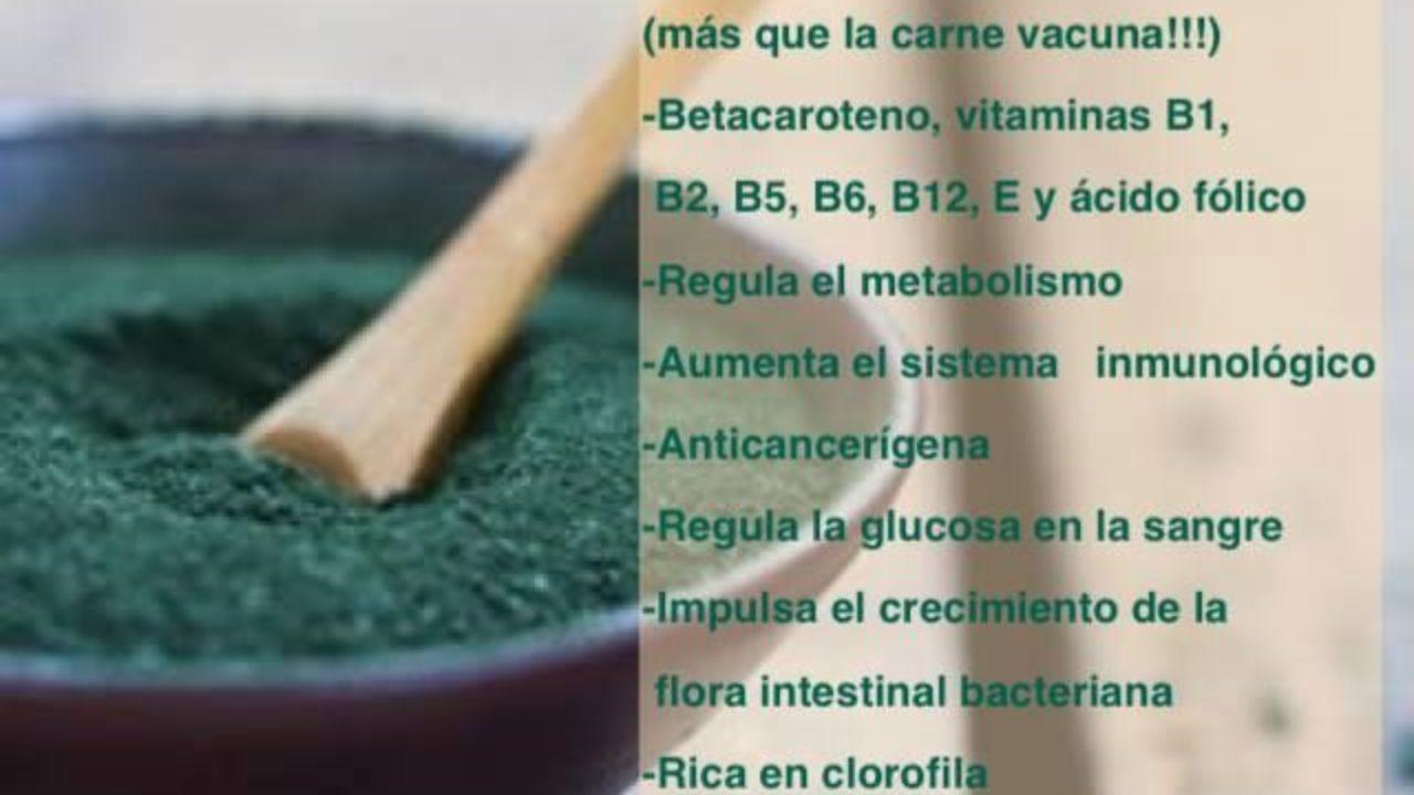Los Beneficios Del Alga Espirulina Para Adelgazar Infografías Y Remedios