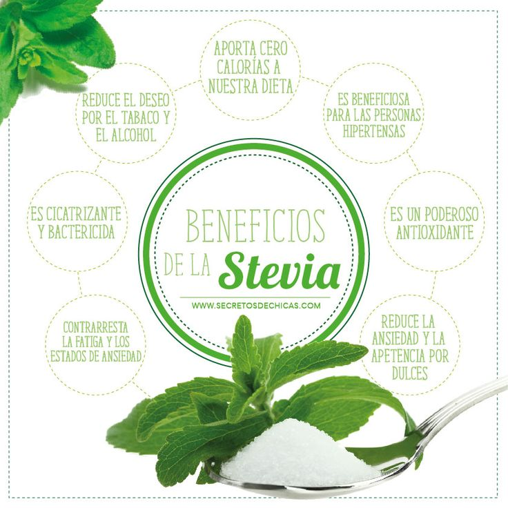 ¿Para que sirve la stevia? | Infografías y Remedios