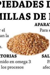 propiedades de las semillas de lino