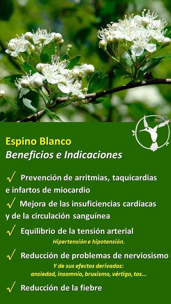 beneficios del espino blanco
