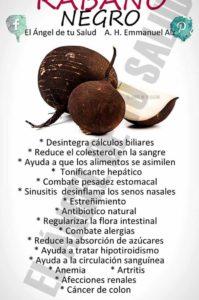 beneficios del rábano negro
